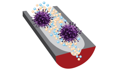 A new sensor can distinguish infectious viruses from noninfectious ones thanks to selective DNA fragments and sensitive nanopore technology.